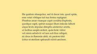 Ovid, Apollo et Daphne