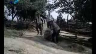 Gospodin za edin den: Chasing the pig