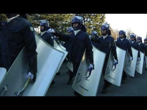 Tokyo Metropolitan Police Department parade 2011