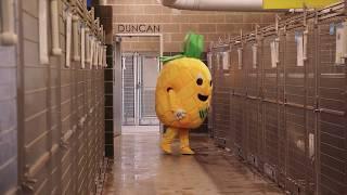 Waco Pineapple Visits the Animal Shelter - Be a Waco Ambassador!