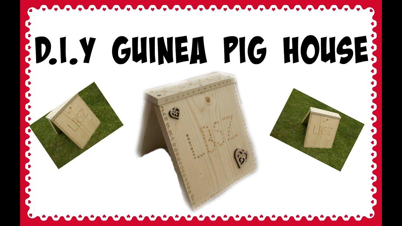 Diy guinea pig house