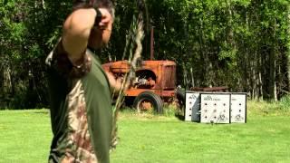Bulldog Archery Targets New Plus Series