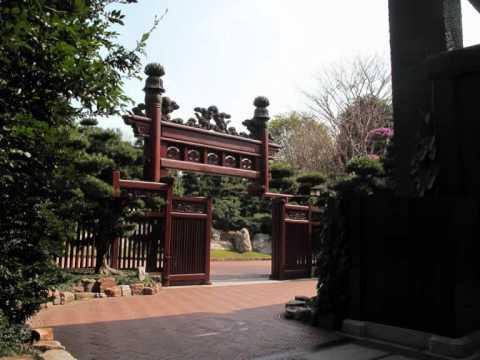 Chi Lin Nunnery & Nan Lian Garden in Hong Kong