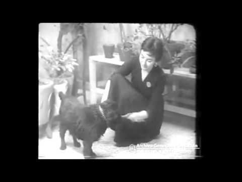 isabel sarli mis argentina 1955