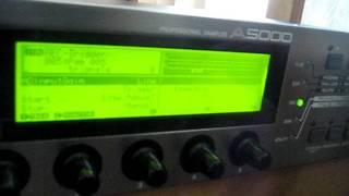 MVI 6135