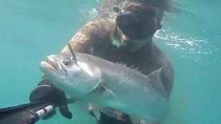 Zıpkınla Balık Avında Kemer Bıçak ve Dizgi Kullanımı