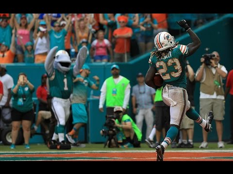 Miami Dolphins 2016-2017 Official Season Highlights || HD ||