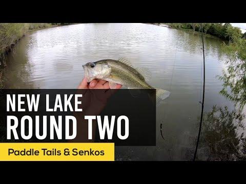 NEW LAKE And NEW CREEK Fishing