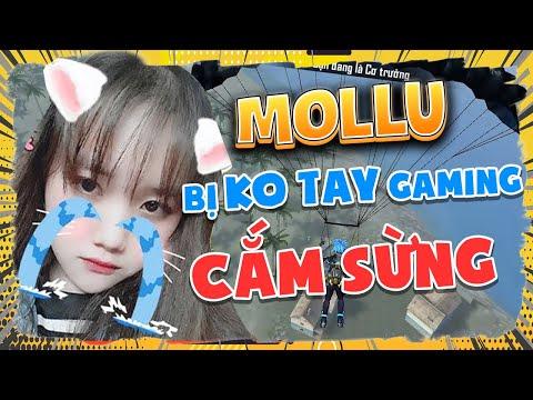 [Free Fire] Mollu Bị Không Tay Gaming Cắm Sừng - Sự Thật Phũ Phàng | Mollu TV
