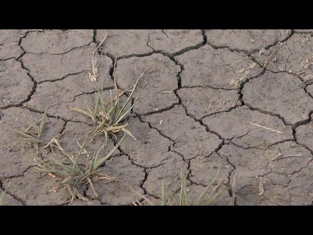 Кейптаун может остаться без питьевой воды