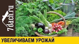 Увеличиваем урожай с помощью стимуляторов - 7 дач