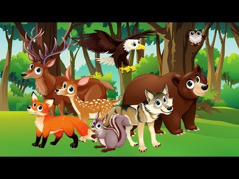 Learn Forest Animals for Kids | Wild Animals & Tractor | Nursery Rhymes