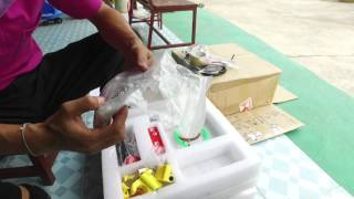 ร ว ว ช ด diy kit เคร องพ มพ 3 ม ต 3d printer prusa i3 ร นม lcd