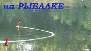 Рыбалка. Видео Зарисовки из моего канала. Ловля на поплавок и донку карася, тарани, окуня, судака.(Рыбалка. Видео Зарисовки из моего канала. Ловля на поплавок и донку карася, тарани, окуня, судака. .….((Мой..., 2016-09-22T15:05:01.000Z)