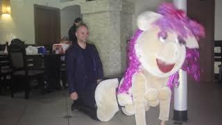 Стриптиз свинки, шоу в Одессе-Киеве. Пародия, розыгрыш на юбилей. день рождения