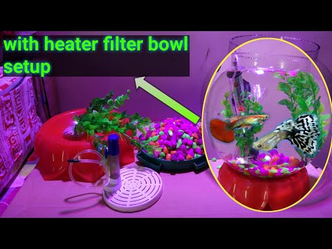 Fish Bowl Setup With Heater Filter