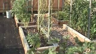 Gardening Tips Garden In Progress Tour.mpg