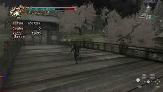 Fake Ninja Gaiden