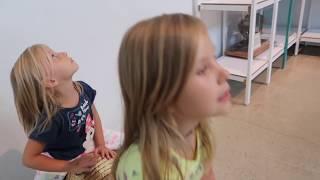 Динозавр НАПАЛ на Папу  Николь  / Влог Едем к Динозаврам / Парк развлечений для детей