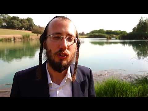 יואלי שטיינברג & ארי רייך | ויחן שם ישראל נגד ההר | Yoeli Steinberg