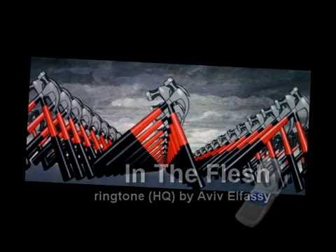 Pink Floyd - In The Flesh Solo (HQ Ringtone)
