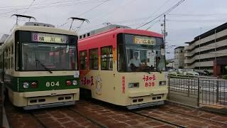 広島電鉄800形809号『うまか豆ラッピング』江波にて