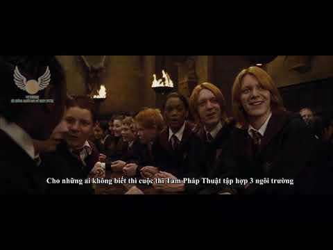 Xem Phim Harry Potter Và Chiếc Cốc Lửa - (Vietsub) Chào mừng Beuxbatons và Durmstrang đến Hogwarts   HARRY POTTER VÀ CHIẾC CỐC LỬA