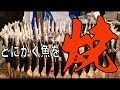 【屋台の神業】 雑学 あり★焼き魚 囲炉裏 命!京都 でアユ も イワシ も焼きまくる屋台です WSD#56  京都 魚 屋台