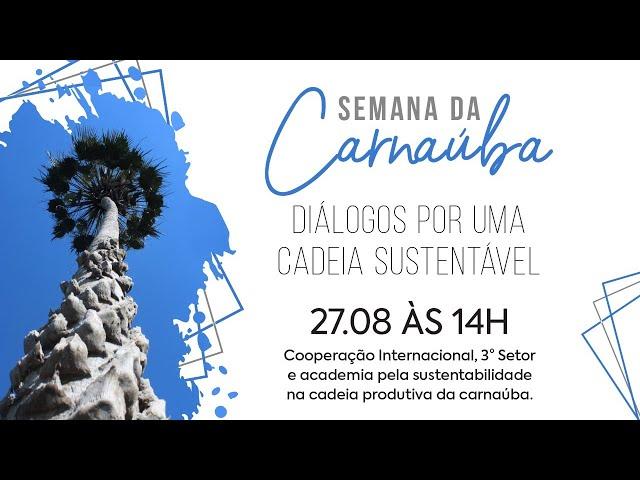 Semana da Carnaúba   27.08 - Cooperação Internacional, 3° Setor e academia na cadeia da carnaúba.