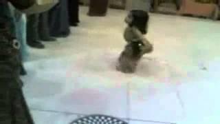 Alaji Dance