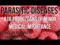 Parasitic Diseases Lectures #18: Protozoans of Minor Medical Importance