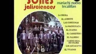 Mariachi Nuevo Tecalitlan  El Tirador