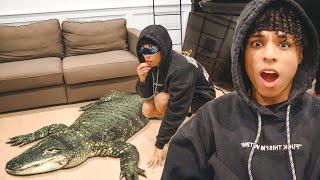 SCARING LARRAY WITH GIANT ALLIGATOR!!