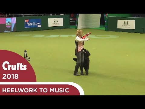 Heelwork to Music Competition Part 3 | Crufts 2018