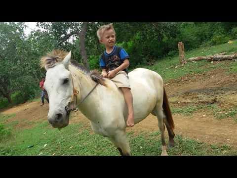 Kecil tapi hebat bisa naik kuda