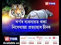 Threat to conservation of Assam rhino, tiger | China Opens Rhino horn, tiger body parts trade