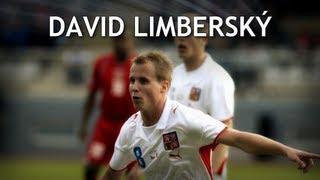 David Limberský - FC Viktoria Plzeň |HD|