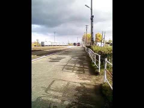 2ТЭ116-217А с пригородным поездом Тавда-Туринск-Егоршино