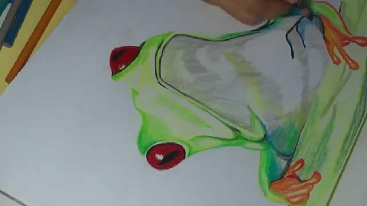 Como Dibujar una Rana a Color - YouTube