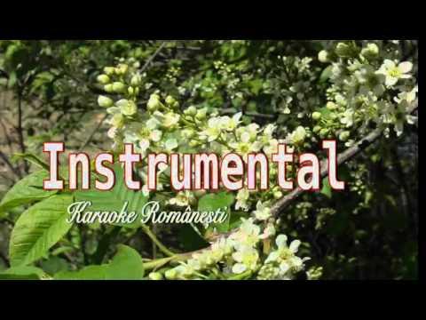 Floare de Malin, Karaoke Romanesti