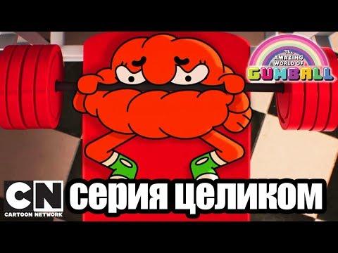 Гамбола | Сигнал + Подруга (серия целиком) | Cartoon Network