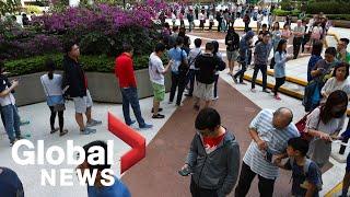 Hong Kong pro-democracy candidates delivered landslide in local elections