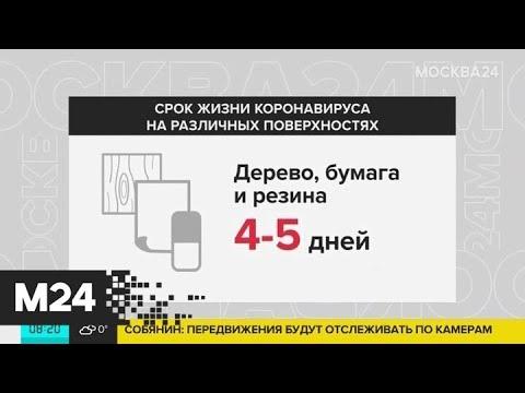 Ученые выяснили, при какой температуре воздуха коронавирус особенно активен - Москва 24