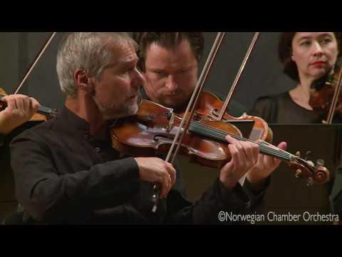 Béla Bartók - Romanian Folk Dances for String Orchestra Sz.56 BB 68
