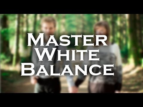 Photography Tips | White Balance Card