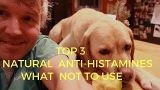 Top 3 Natural Antihistamines