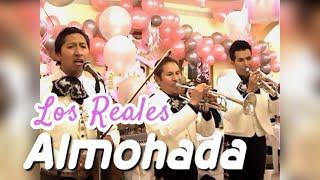 VIDEO: ALMOHADA (Pepe Aguilar)
