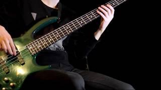 Tweaker (Chris Vrenna & Clint Walsh) – Doom 3 Theme (bass cover)