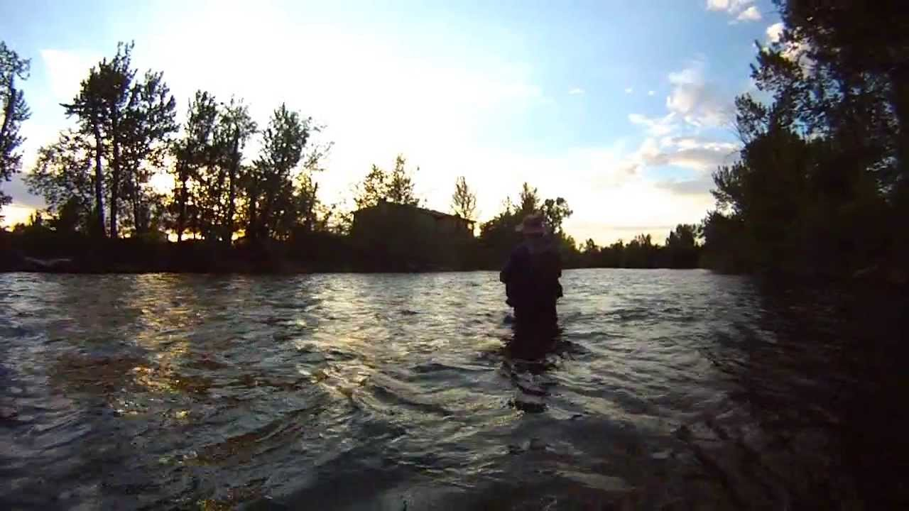 Rivervid fly fishing boise river in town youtube for Fly fishing boise idaho