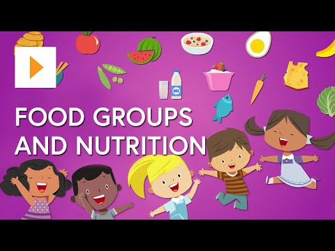 Food Groups And Nutrition